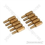 Torx Gold Screwdriver Bits 10pk - T20