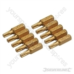 Torx Gold Screwdriver Bits 10pk - T25